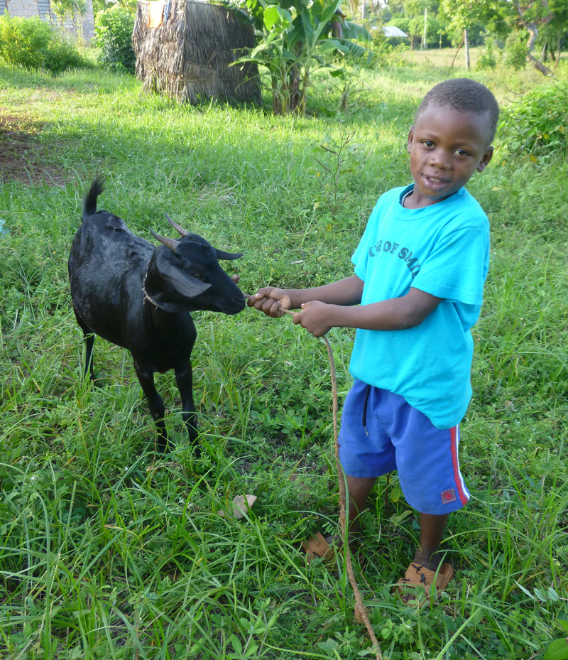 TEDT-HAMISI-WITH-GOAT2