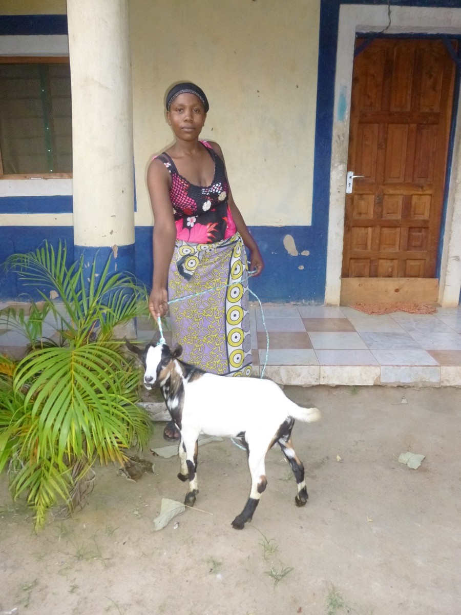 hidaya, with goat